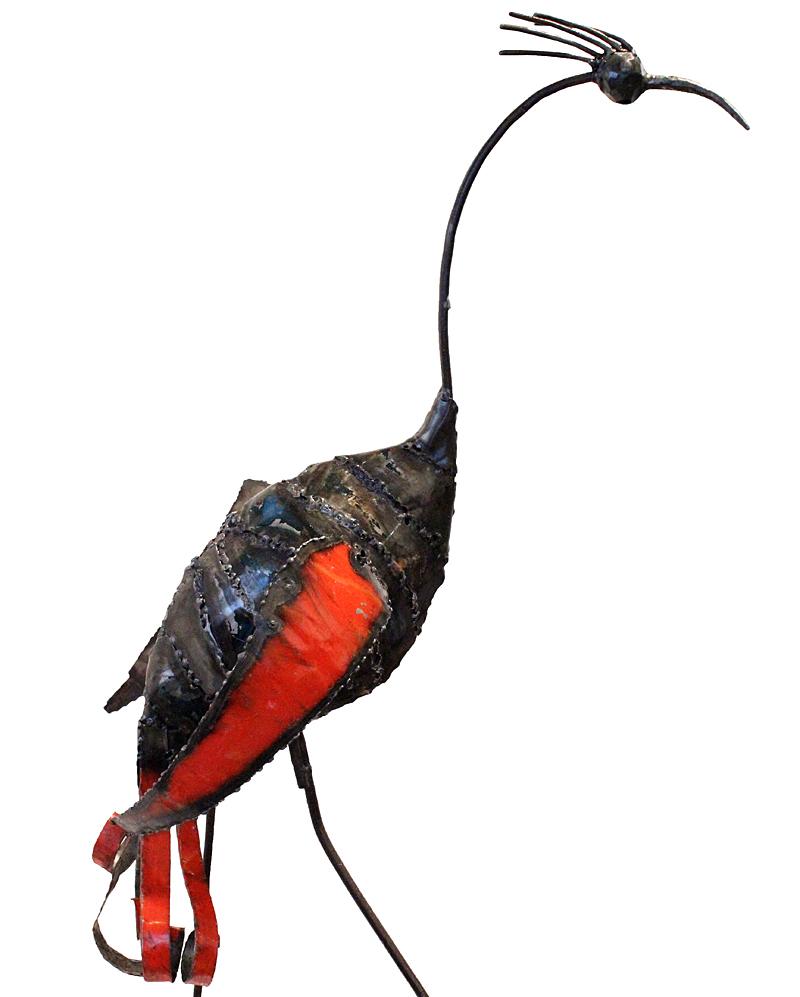 Naningofågel av Xavier Sayago. Foto: Just Africa.